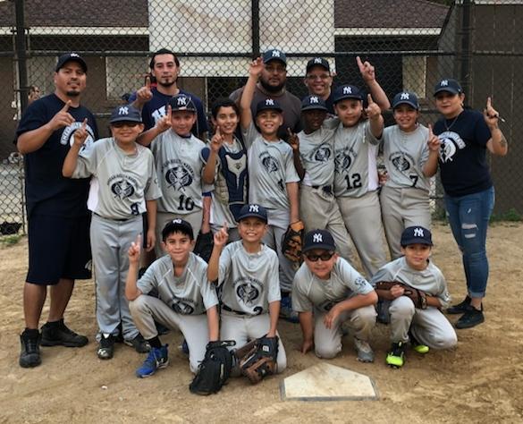 2018 Minor Yankees